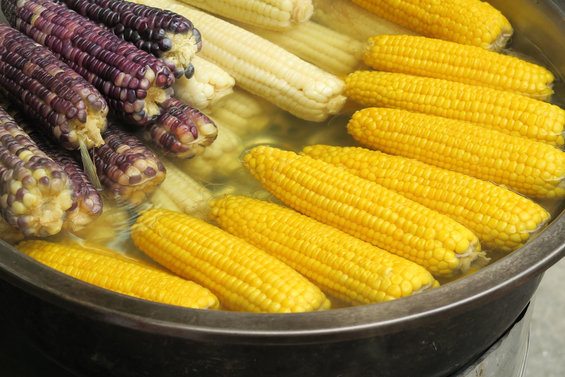 Česneková kukuřice