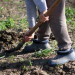 Jaro příprava zahrady
